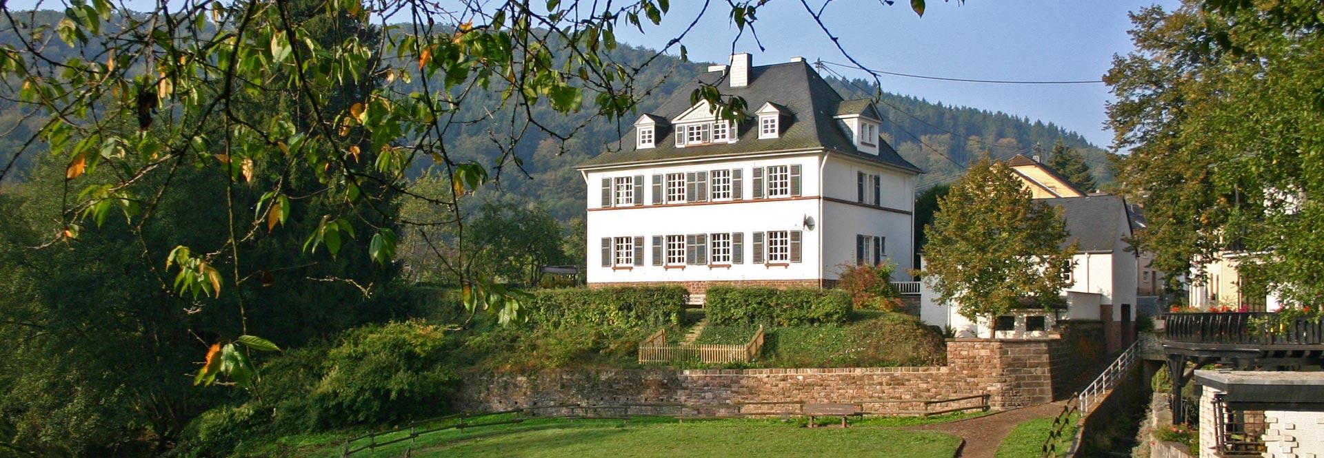 luxe vakantiehuis 16 personen privé bioscoop, sauna en jacuzzi in Eifel, Duitsland