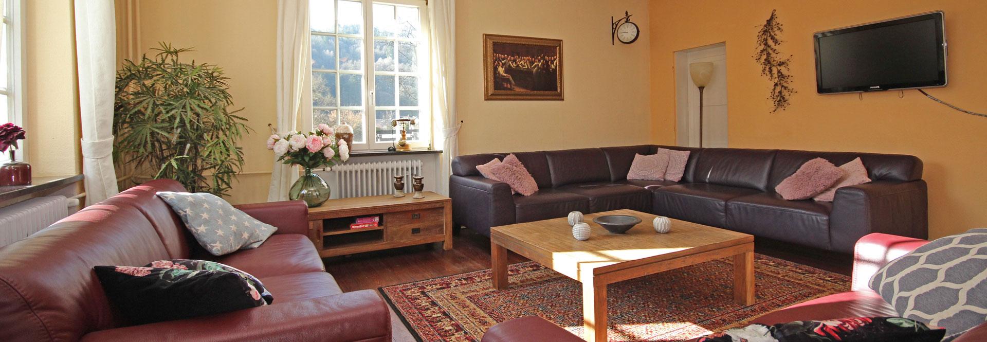 luxe vakantiehuis 16 personen privé bioscoop, sauna en jacuzzi in Eifel, Nederland